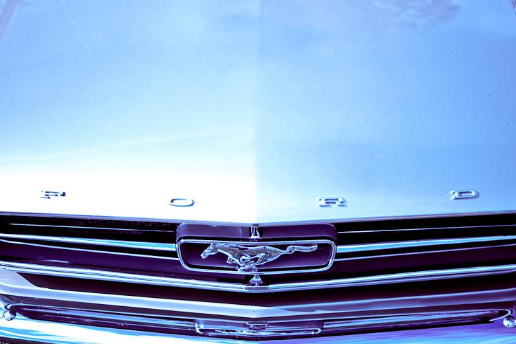 Tag 46 Mustang