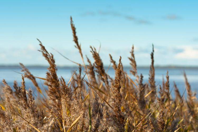 109 Herbstliche Nordsee