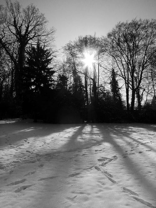 Tag 164 Winterlandschaft VI
