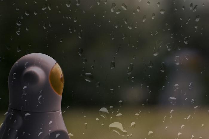 Tag 170 Regen IV