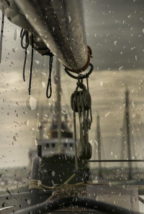 Tag 168 Regen II