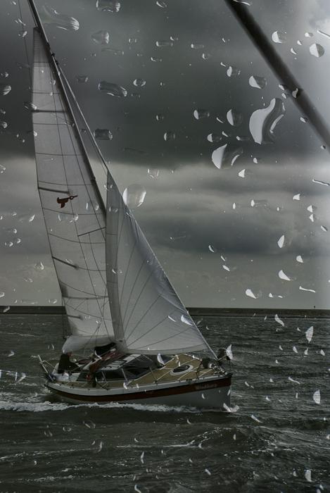 Tag 169 Regen III